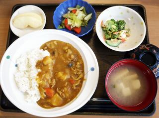きょうのお昼ごはんは、カレーライス・卵サラダ・浅漬け・みそ汁・くだものでした。野菜はご利用者さんが切っています。