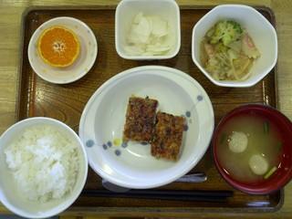 今日のお昼ご飯は、大豆入りハンバーグ、くず煮、かぶのサラダ、味噌汁、果物です。