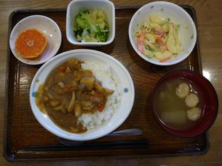 昨日のお昼ご飯は、カレーライス、マカロニサラダ、即席漬け、味噌汁、果物でした。
