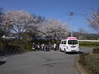 今週は、桜見をしていますが、天気のよい今日は、保育園の子どもたちと駐車場で、花見と体操をしました。子供たちと一緒だとご利用者の体操もふだんより頑張っているようにみえます。