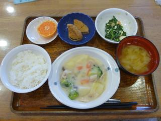 きょうのお昼ご飯は、クリームシチュー、サラダ、煮物、味噌汁、果物でした。