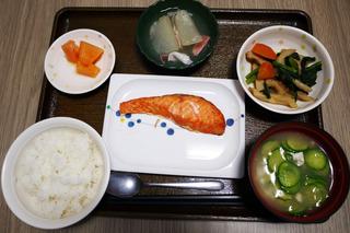 きょうのお昼ご飯は、焼き魚、含め煮、とうがんのかけあん、冷や汁、くだものでした。