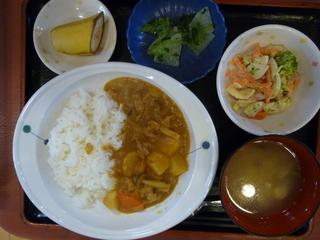 きょうのお昼ご飯は、カレーライス、マカロニサラダ、浅漬け、味噌汁、果物でした。