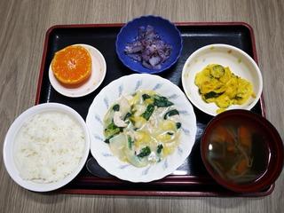 きのうのお昼ごはんは、鶏肉と白菜のクリーム煮、サラダ、ゆかり和え、味噌汁、くだものでした。