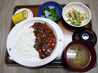 きょうのお昼ごはんは、ハヤシライス、マカロニサラダ、浅漬け、味噌汁、果物でした。