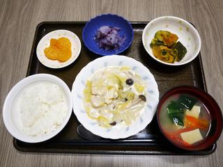 きょうのお昼ごはんは、豚肉と白菜のクリーム煮・サラダ・ゆかり和え・みそ汁・くだものでした。