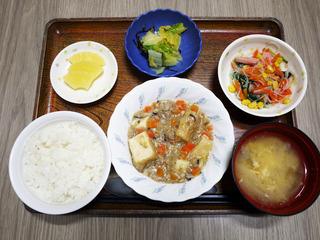 きょうのお昼ごはんは、家常豆腐・春雨サラダ・浅漬け・みそ汁・くだものでした。