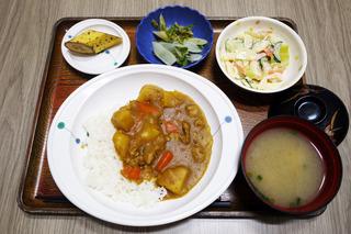 きょうのお昼ごはんは、カレーライス・サラダ・浅漬け(うど)・みそ汁・くだものでした。