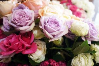 綺麗なバラのプレゼント