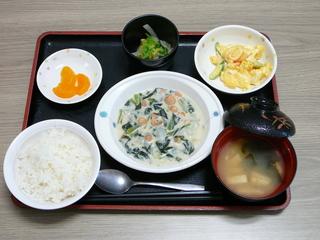 今日のお昼は、エビと小松菜のミルク煮、卵サラダ、和え物、味噌汁、果物です。