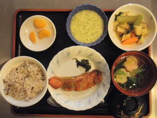 きょうのお昼ご飯は、五穀米、鮭の木の芽焼き(山椒)、若竹煮、とろろ、お吸い物、果物でした。