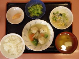 きょうのお昼ご飯は、鶏団子のクリーム煮、サラダ、紅生姜大根、味噌汁、くだものでした。