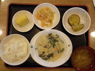 今日のお昼ご飯は、鶏肉のクリーム煮、サラダ、煮物、味噌汁、果物です。