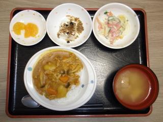 今日のお昼ご飯は、カレーライス、サラダ、ちりめん奴、味噌汁、果物でした。