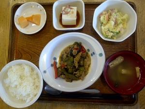 今日のお昼ご飯は、なすとピーマンの味噌カポナータ、サラダ、冷奴、味噌汁、果物、です。