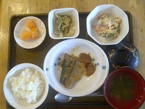 今日のお昼ご飯は、鯖の大根のぴり辛煮、卵とじ、白和え、味噌汁、果物、です。