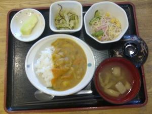 今日のお昼ご飯は、チキンカレー、サラダ、即席漬け、味噌汁、果物、です。