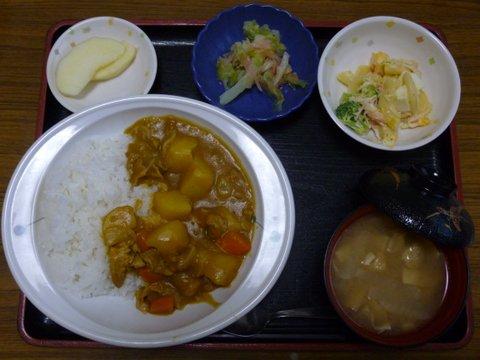今日のお昼は、カレーライス、卵サラダ、酢の物、味噌汁、果物です。