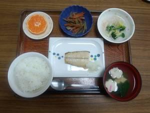 今日のお昼は、焼き魚、きんぴら、かにかまあん、味噌汁、果物です。