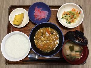 今日のお昼は、鶏肉と大豆のカレー煮、サラダ、紅生姜大根、味噌汁、果物です。