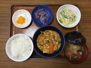 今日のお昼ごはんは、鶏肉と大豆のカレー煮、スパゲッティサラダ、浅漬け、味噌汁、果物です。