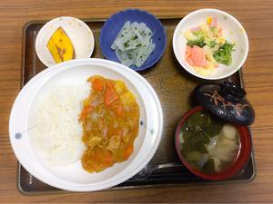 今日のお昼ごはんは、カレーライス、マカロニサラダ、浅漬け、みそ汁、果物でした。