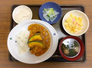 今日のお昼ごはんは、夏野菜の挽肉カレー、マカロニ卵サラダ、浅漬け、みそ汁、果物でした。